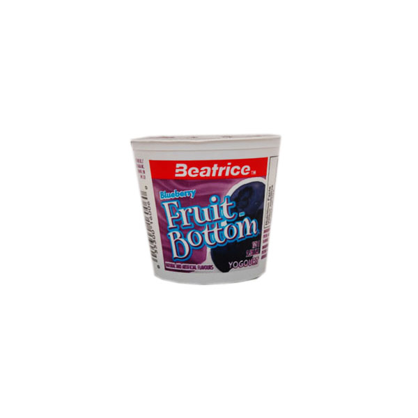 Beatrice Blueberry Yogurt